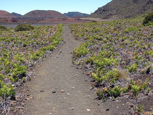 The cinder flats, after the initial steep descent from the crater rim.