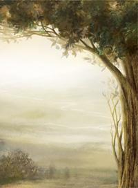 tree_with_mist