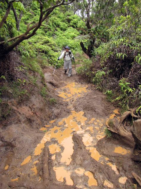 pihea_trail_mud