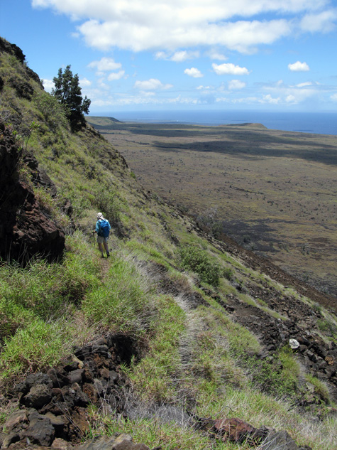 This is an upper section of the Hilina Pali Trail. The trail varies a lot. Some stretches are nicely paved with carefully set lava stone, other parts are dirt and many of these are overhung with grass and weeds, making it difficult to see where you're stepping. Still other parts are `a`a clinker, which can easily roll out from under your feet. I fell down only once -- that felt like an accomplishment! -- but I skidded many times.