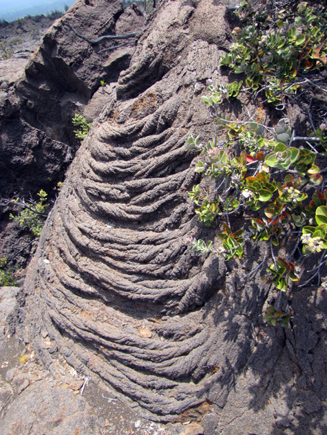 An example of the ropy texture of some pahoehoe lava.