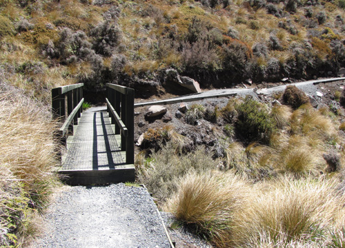 trail_and_bridge_500px