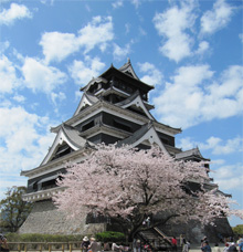This is Kumamoto Castle in spring 2013. The building and outer walls suffered extensive damage during the quakes.