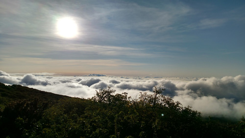 sea_of_clouds_500x281